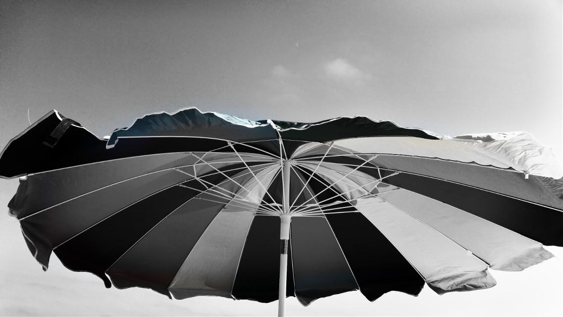 #monochrome #summer #daylight #beach #interesting #fun #wind  #blackandwhite