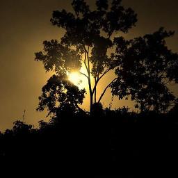 sunsetsilhouette photography nature