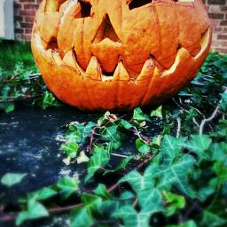 Halloween Poo pumpkin