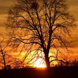 photography nature colorful sunset quotesandsayings