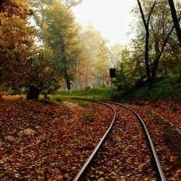 nature emotions park autumn