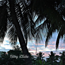 sunset dusk blue sky nature