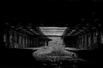 glasgow blackandwhite nature subway scotland