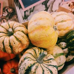fall autumn pumpkins fallcolors lastfallpics