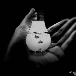 petsandanimals fish lightbulb surreal surrealism blackandwhite people photography oldphoto