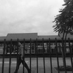 blackandwhite walk man walking