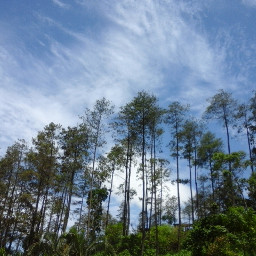 wapintheclouds nature clouds