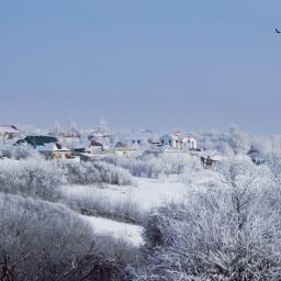 photography nature winter snow landscape