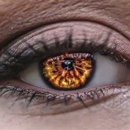eyes fattaleffect