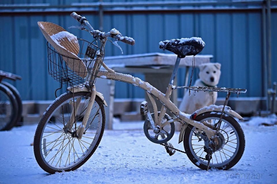 #bicycle #snow #winter