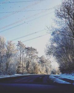 snow winter ice winterwonderland