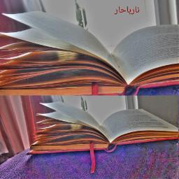 narbuharim türkiye risale muslim t