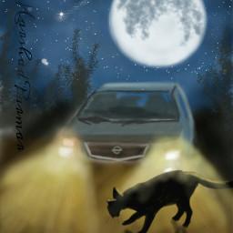 wdptwilight moon cat car digital
