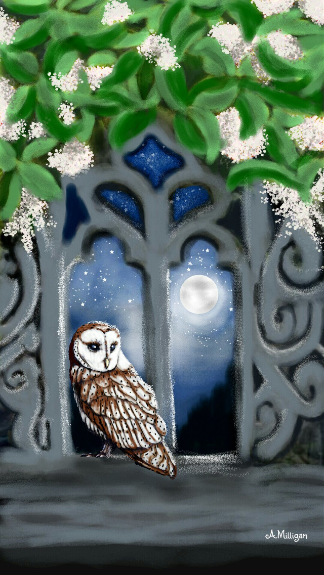 #wdptwilight My third entry for twilight 😊  #blackandwhite #colorsplash #colorful #flower #nature #petsandanimals #beautiful  #magical # majestic  #nightime  # moonlight #draw.😊 ❤ 💚