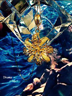 photography goldjewelry